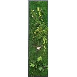 Tableau végétal vertical